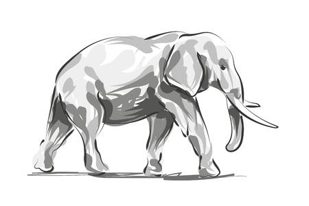 Vector digital sketch of an elephant Illustration