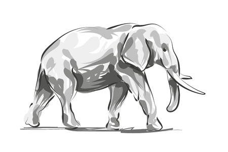 Vector digital sketch of an elephant Ilustracja