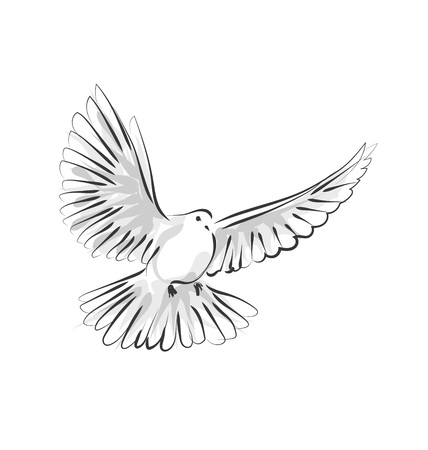 Vector line sketch dove Иллюстрация