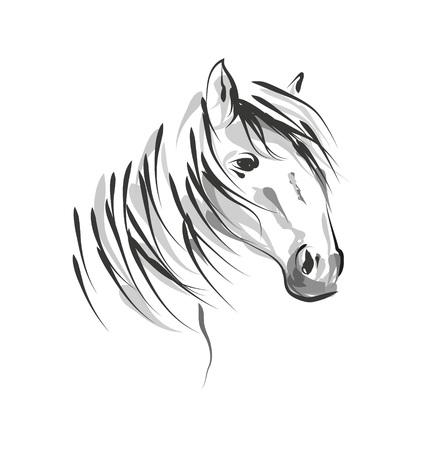 Vector line sketch horse head