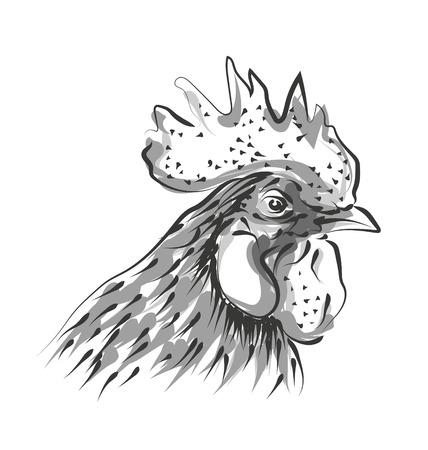 Vector line sketch rooster head Иллюстрация