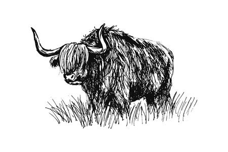手スケッチ牛。ベクトル図