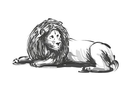 Sketch of a lion vector illustration.