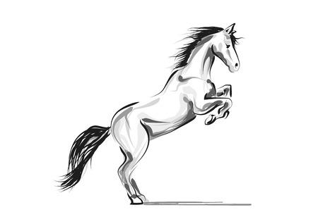 Vector line sketch horse Stock Vector - 88943381