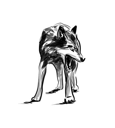 벡터 잉크 스케치 늑대입니다.