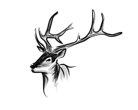 Vector ink sketch head deer.