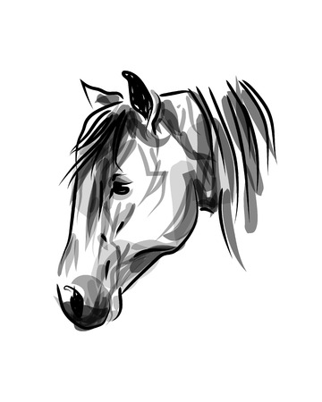 Vector ink sketch of a head horse