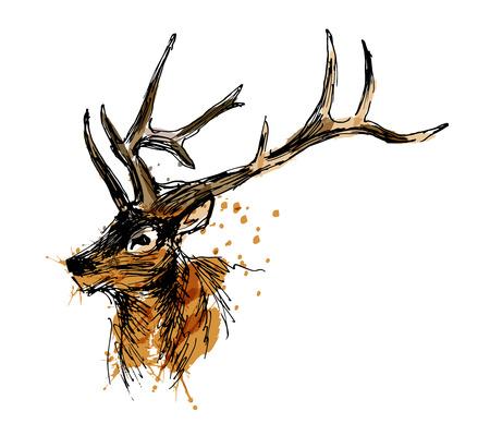 Colored hand sketch head deer vector illustration.