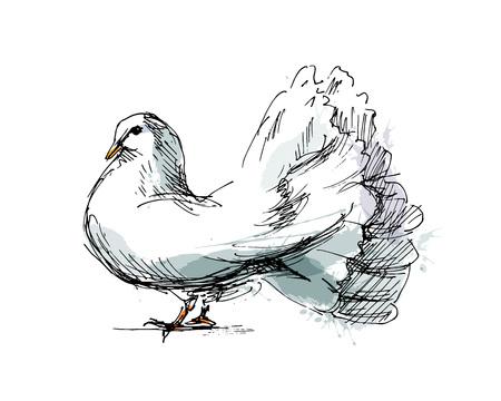 Colored hand sketch dove vector illustration.