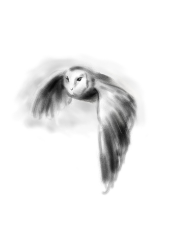 Hand drawing of a flying owl. Digital illustration