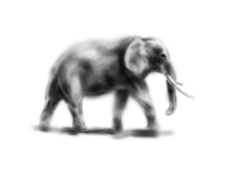 手描き象。デジタルイラストレーション 写真素材