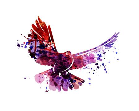 Vector watercolor silhouette dove