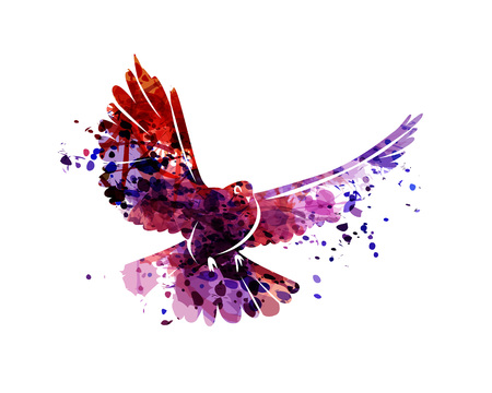 Vector watercolor silhouette dove