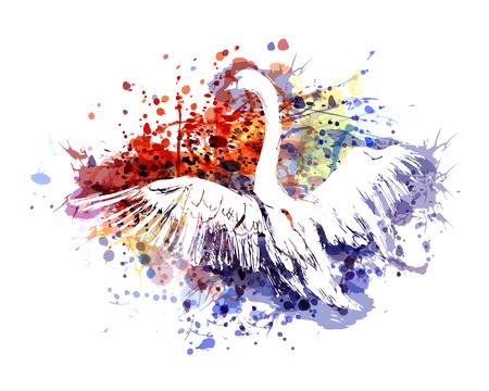 Vector color illustration swan Vettoriali