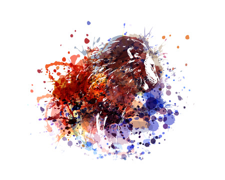 vector color illustration lion Illusztráció
