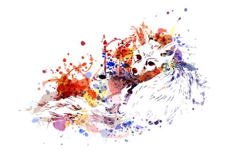 Vector color illustration Fox Çizim