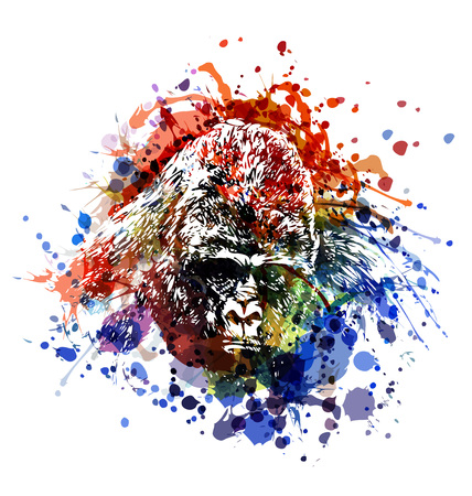 Vector color illustration of a gorilla head Ilustração