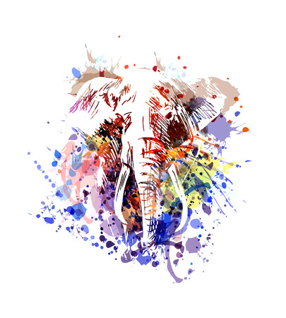 Vector color illustration elephant