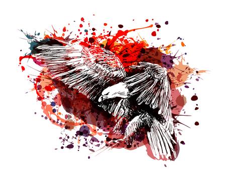 Vector color illustration of a flying eagle  イラスト・ベクター素材