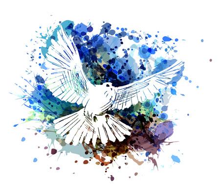 Vector kleurenillustratie van een duif