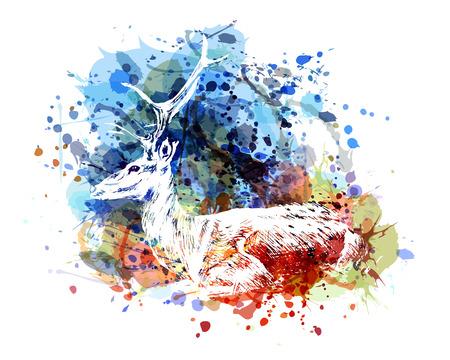 Vector color illustration of sitting deer
