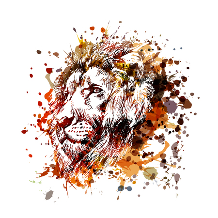 Unique and colorful illustration of a lion head