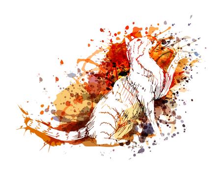 猫のベクトル色イラスト