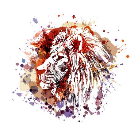Vector color illustration of lion head