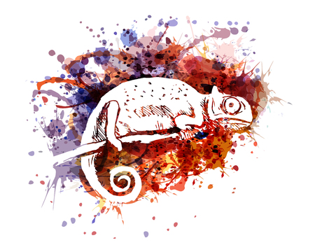Vector color illustration of chameleon