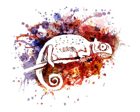 Vector color illustration of chameleon