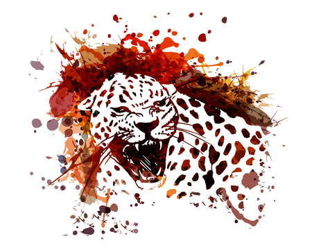 Vector color illustration of leopard 版權商用圖片 - 97500055