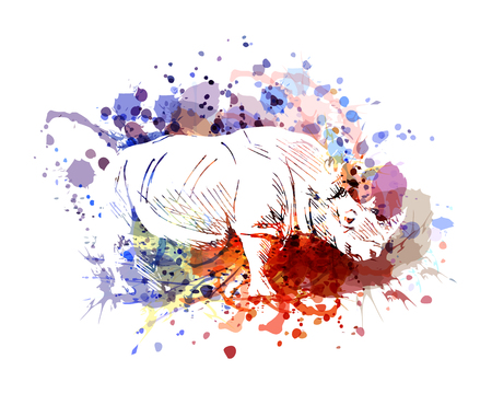 A Vector color illustration of rhinoceros 版權商用圖片 - 97715958
