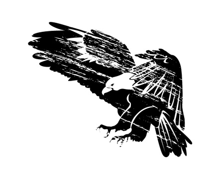 Silhouette of flying eagle illustration