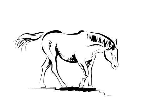 Vector sketch of a horse
