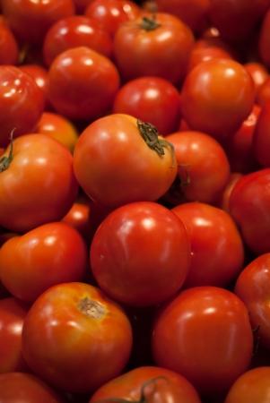 tomato stack photo