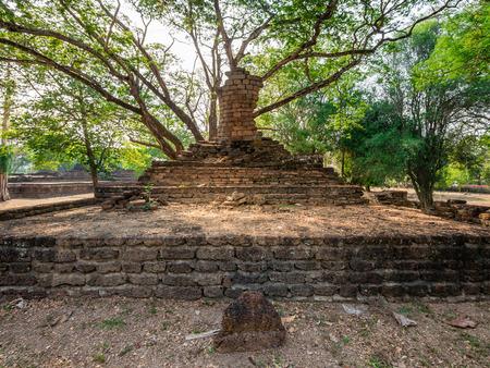 Broken ancient Buddha under a tree at Kamphaengphet Historical Park, Thailand