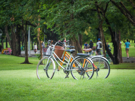 Two empty bicycles in the park with people jogging in the background
