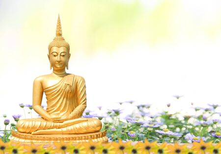 Gloden Buddha statue sitting and background blurred flowers and sky with the light of the sun. Фото со стока