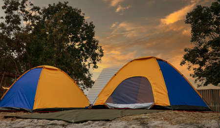 Tourist dome tent camping  in forest camping on sunset background