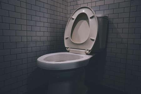 flush toilet,Ceramic white toilet bowl near grey wall, side light in the modern bathroom.