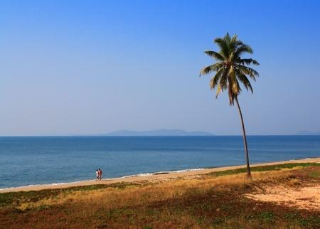sun  sunlight  summer asia thailand  sky seasild photo