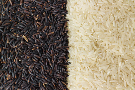Food background with two rows of rice varieties : berry rice, white (jasmine) rice.