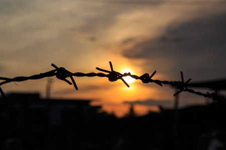 trespass: The old Barbed wire silhouette on sunset sky