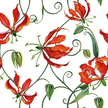 흰색 배경에 gloriosa 꽃 - 수채화 꽃과 함께 아름 다운 원활한 패턴입니다.