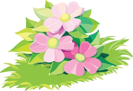 Beautiful, lovely,  detailed flowers vector illustration