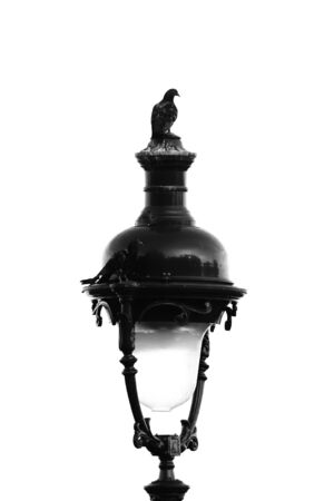 The upper part of the lantern