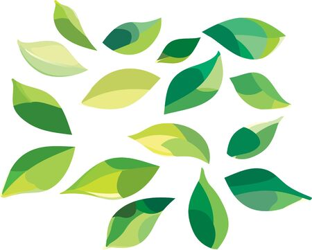 Set of eco green leaves editable vector illustration Illustration