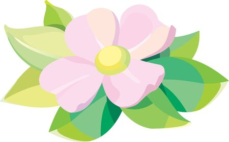 Violet flower with leaves editable vector illustration Illustration