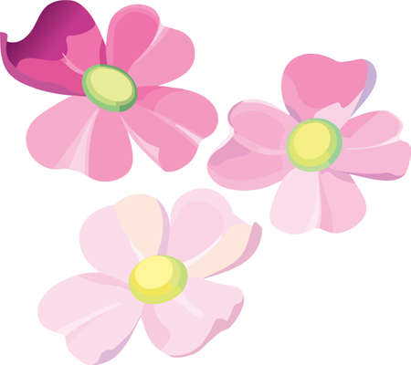 Set of three violet flowers editable vector illustration