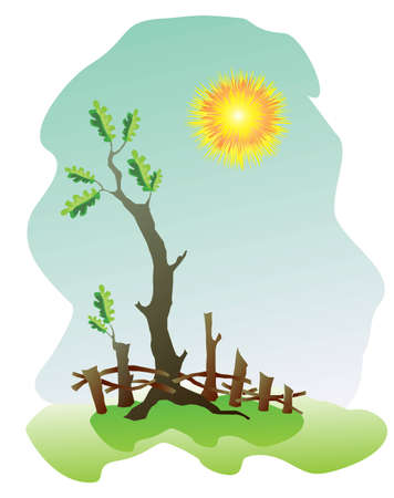 Illustration of the oak under sun in summer Vector